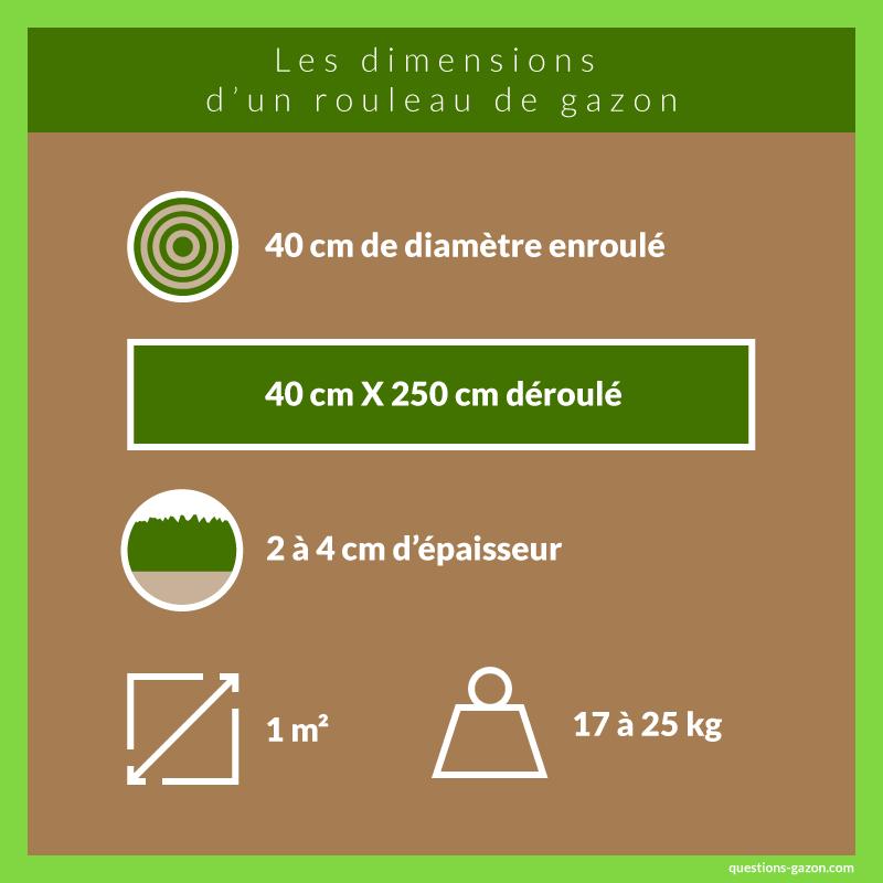 Infographie dimensions et poids d'un rouleau de gazon
